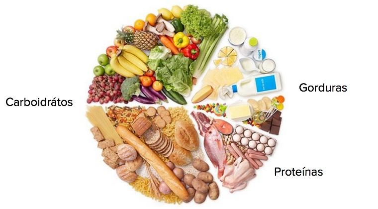 dieta proteina e gordura